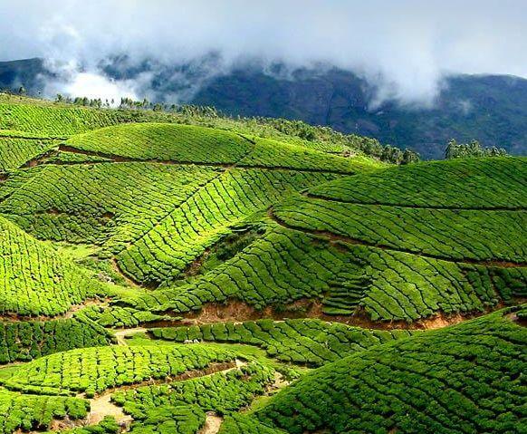 Le Kerala nommé parmi les 10 meilleures destinations de vacances du monde